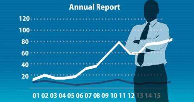 Ferox 2014 Annual Report
